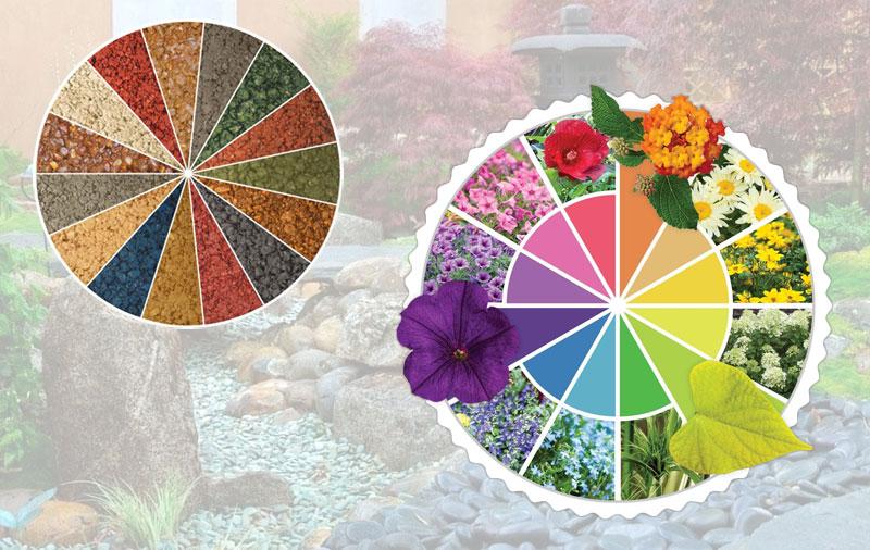 Цвет и текстура сада