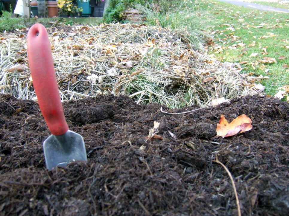 Покрытие почвы мульчей