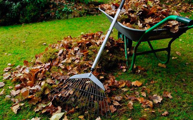 Уборка листвы весной