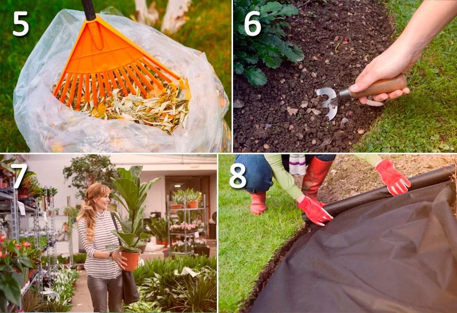 Советы по уходу за садом